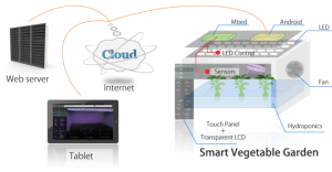 smart_vegetable_garden