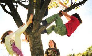 children_play-freely